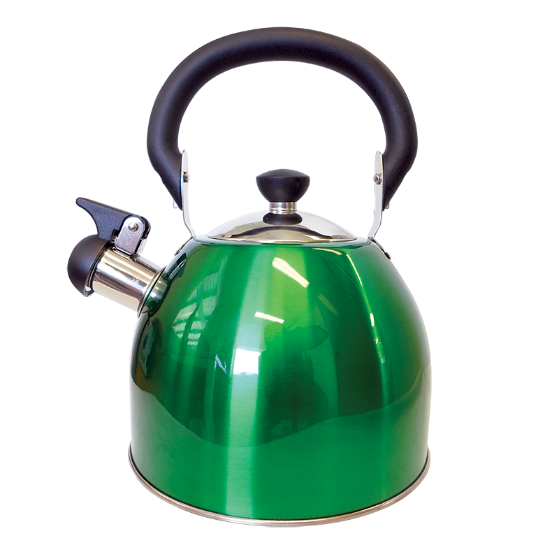 Coast Green Whistling Kettle (2.5Lt)