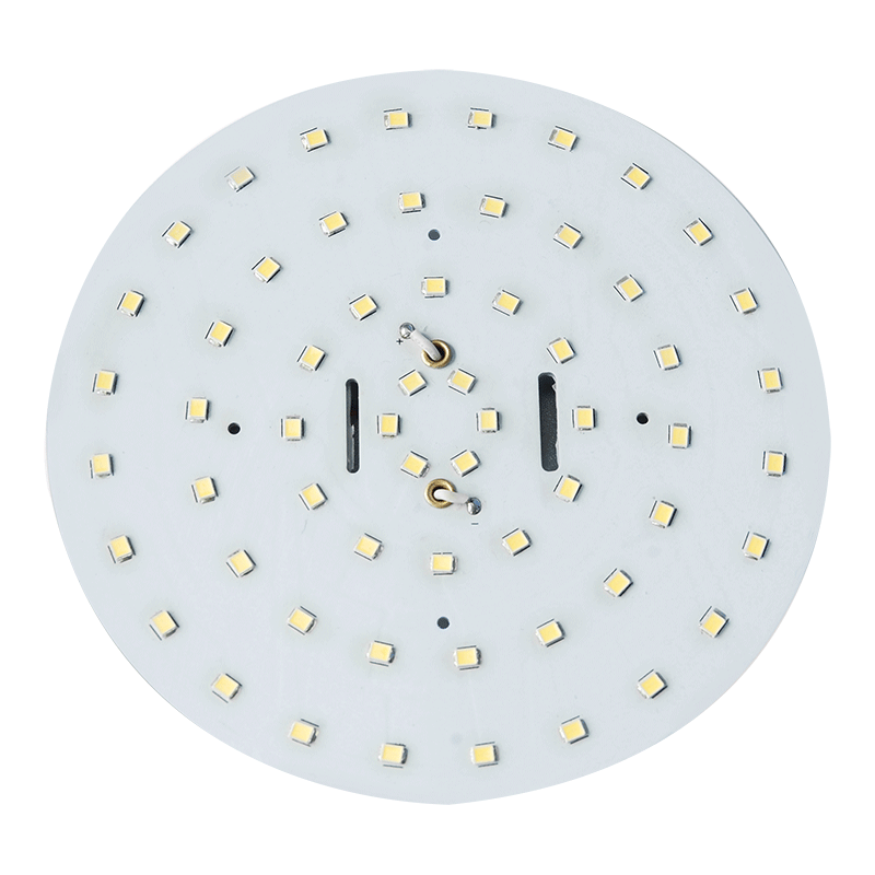 60 LED Round Replacement Globe